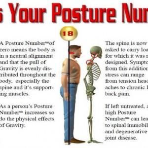 posture number